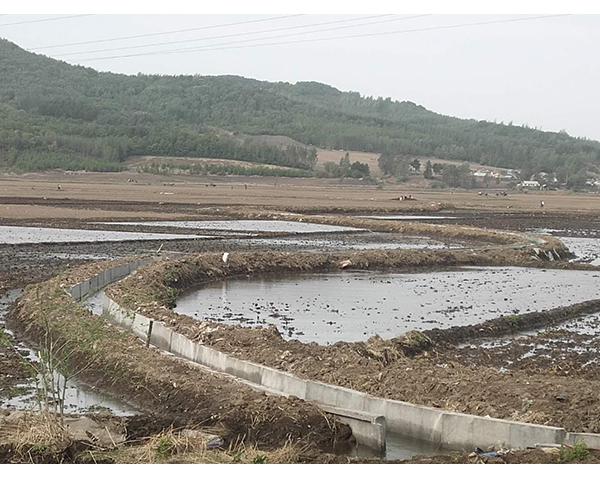 长春必威体育手机登入灌溉渠